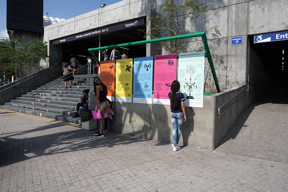 Flor Urbana / Dispositivo Expositivo